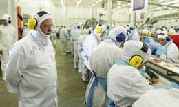 香港或缩减巴西肉类加工厂名单 引发巴西行业担忧